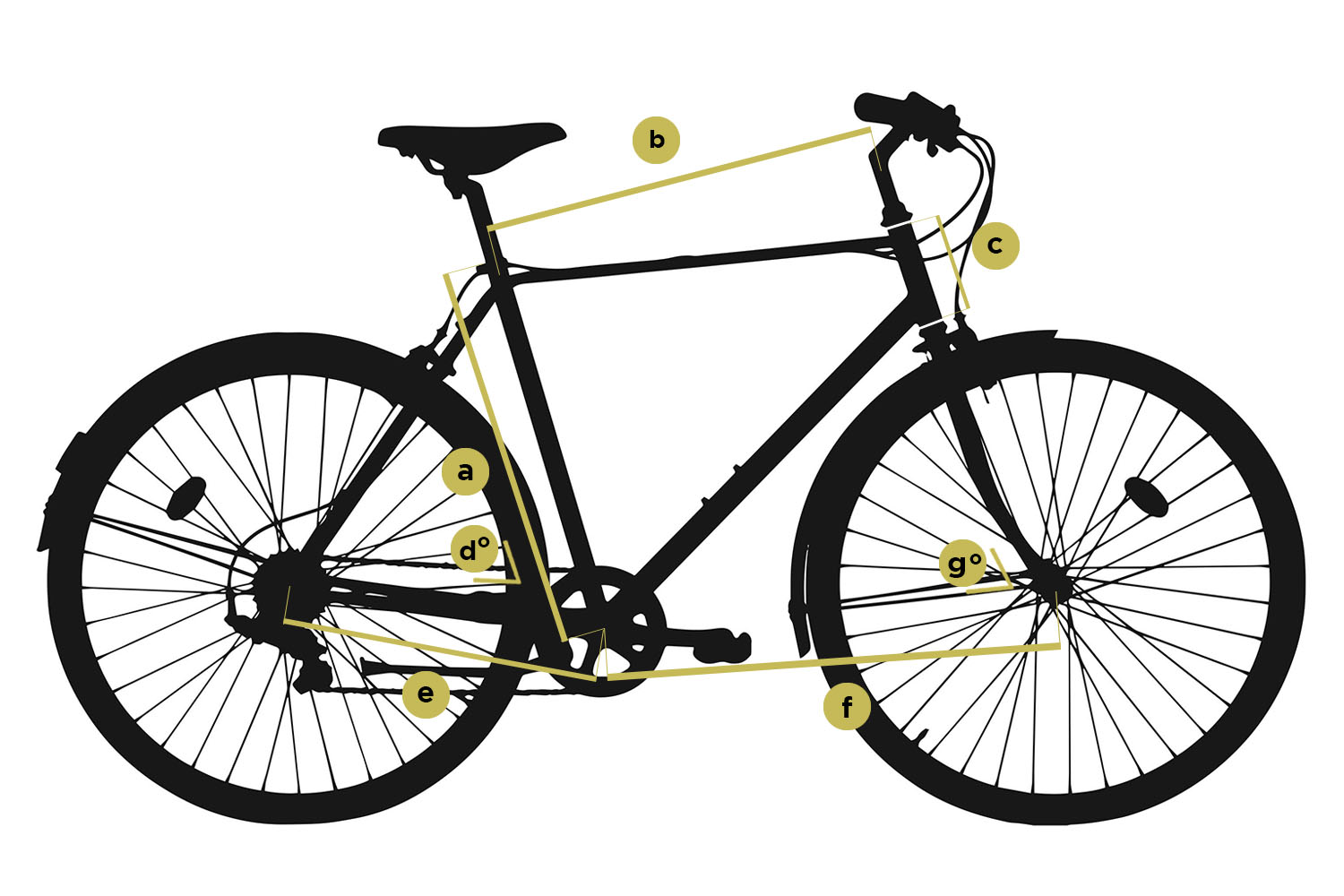 Geometry-fixie-bike